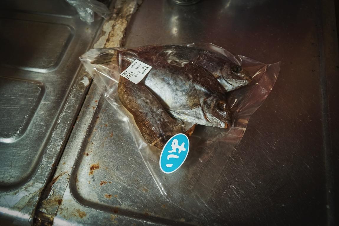 磯釣りの外道アイゴは実は食べるとメチャ美味の魚